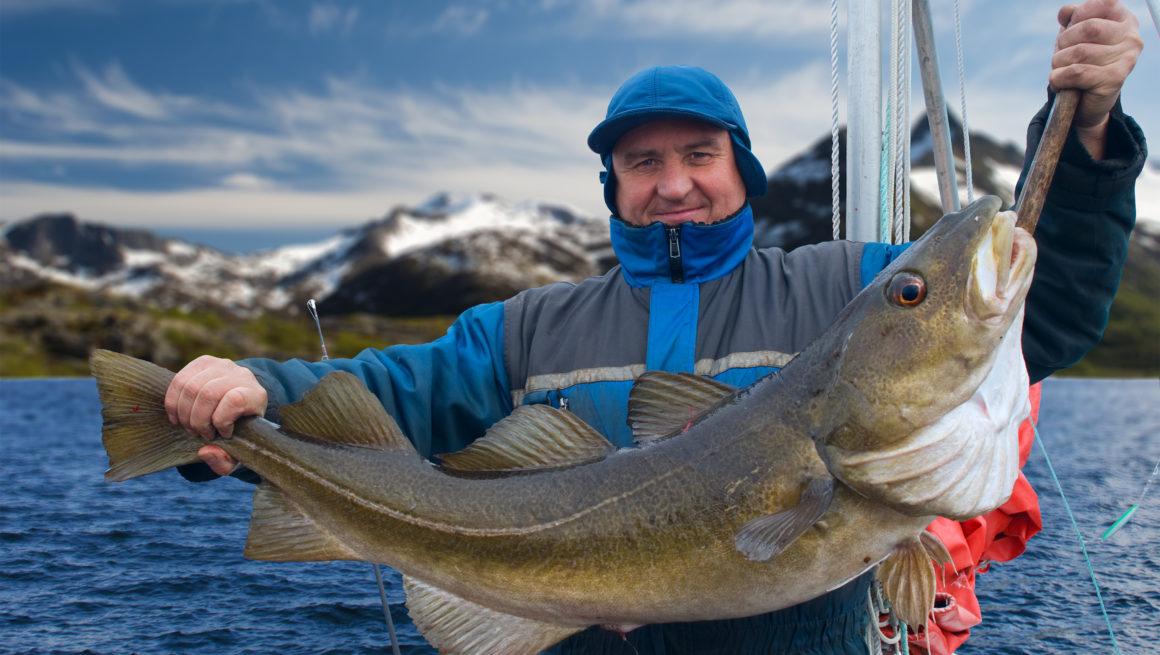 mann på torskefiske