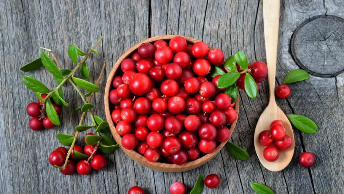 tyttebær i skål